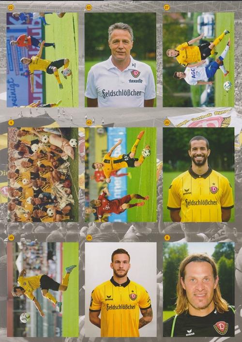 Aufstiegshelden_SG_Dynamo_Dresden_Sticker