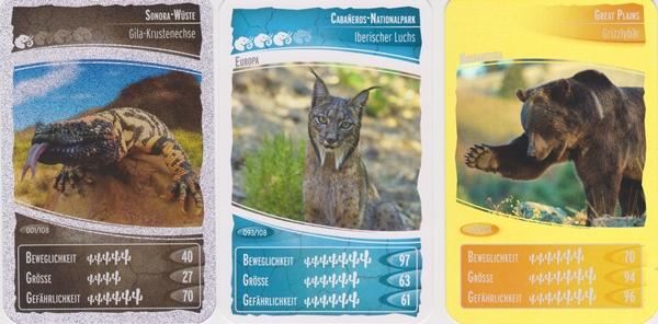 Ozeanien_4_Cards
