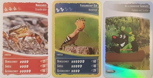 Ozeanien_5_Cards